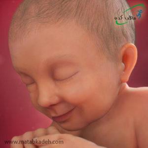 جنین در هفته سیوهفتم بارداری