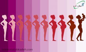 جلوگیری از افزایش وزن در دوران بارداری